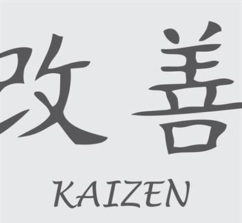 Overwin stagnatie met Kaizen